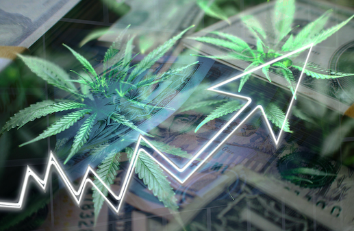 Cash, marijuana leaves, and rising graph arrow