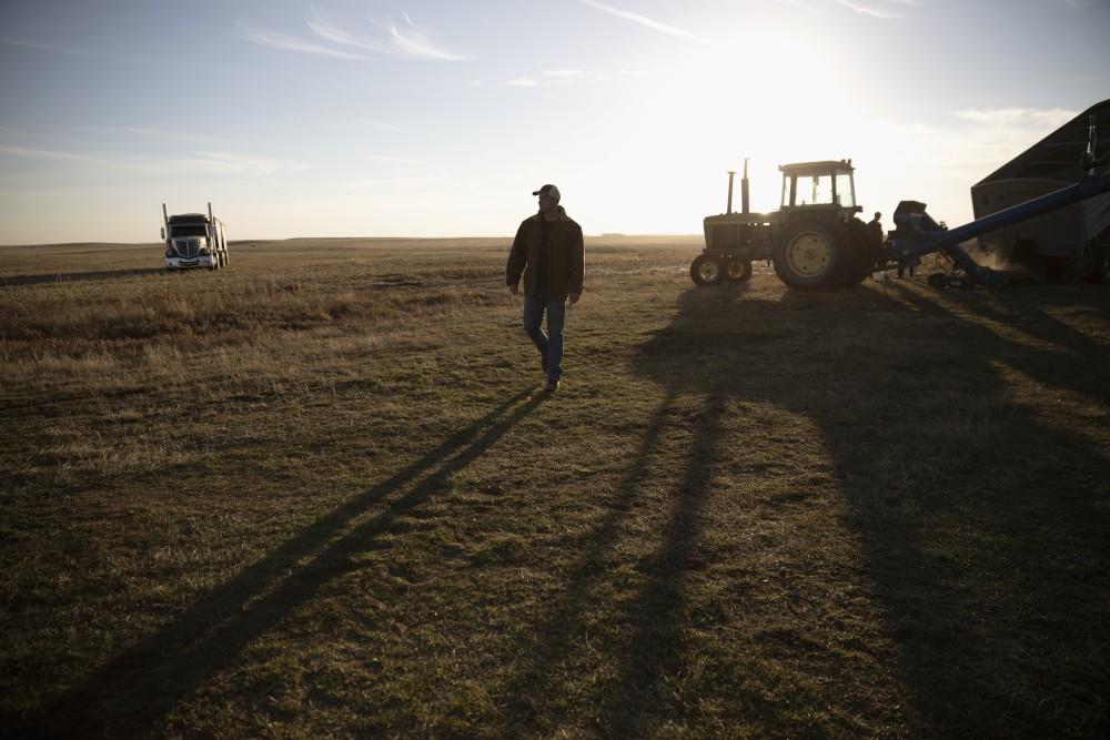A Farmer tends to his crop.