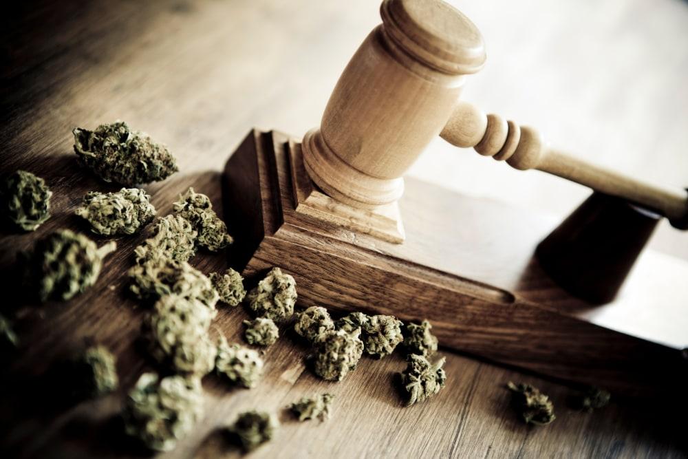 Marijuana and a gavel