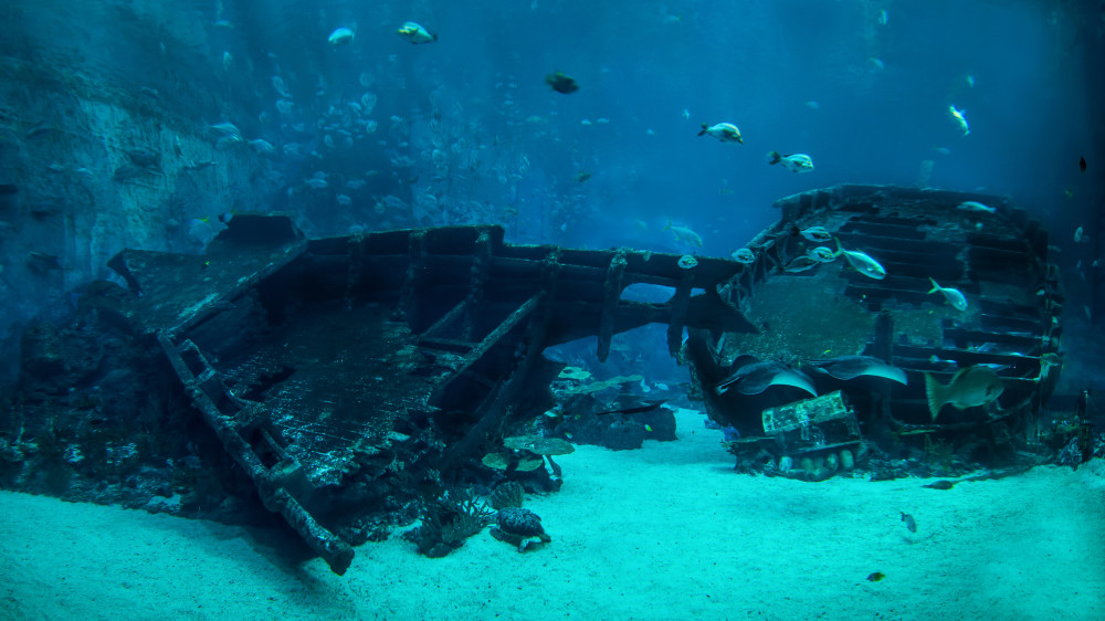 A nice underwater shipwreck