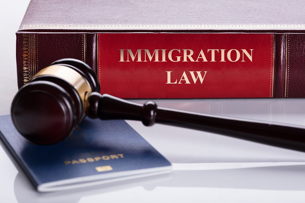 Immigration textbook with gavel