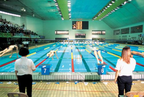 swim-race-diving